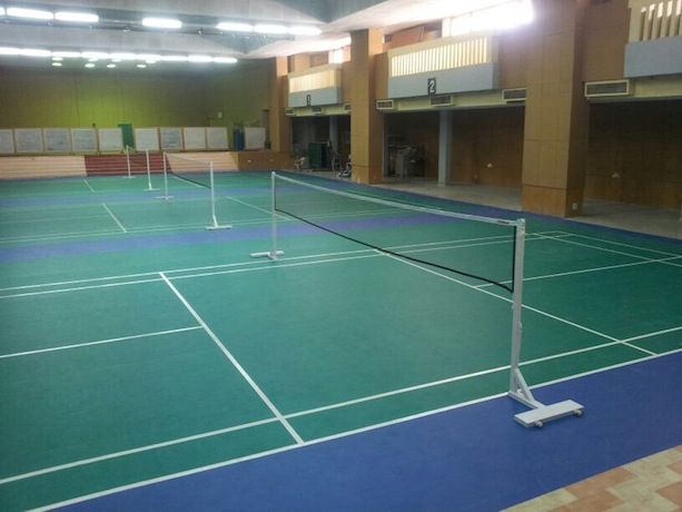 Surfex International Badminton Court